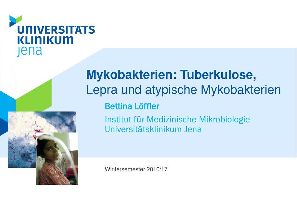 Mykobakterien: Tuberkulose, Lepra und atypische Mykobakterien