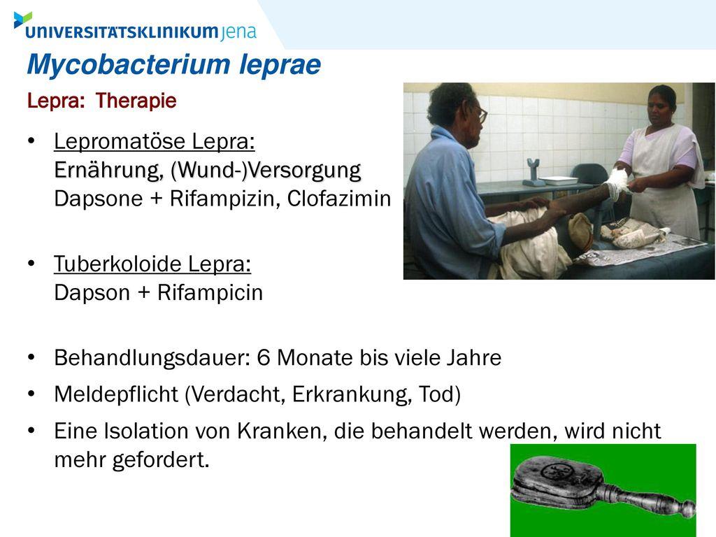Mycobacterium leprae Lepra: Therapie. Lepromatöse Lepra: Ernährung, (Wund-)Versorgung Dapsone + Rifampizin, Clofazimin.