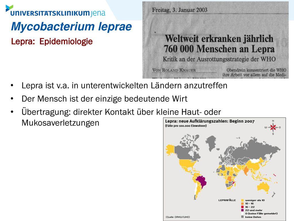 Mycobacterium leprae Lepra: Epidemiologie
