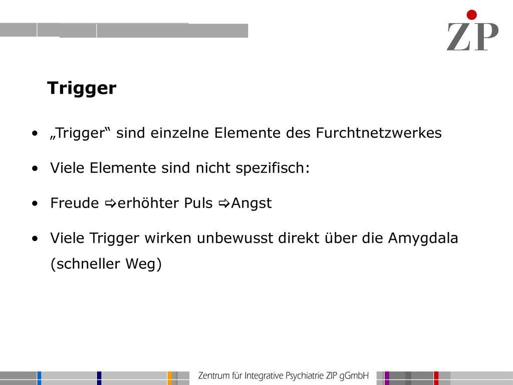 """Trigger """"Trigger sind einzelne Elemente des Furchtnetzwerkes"""