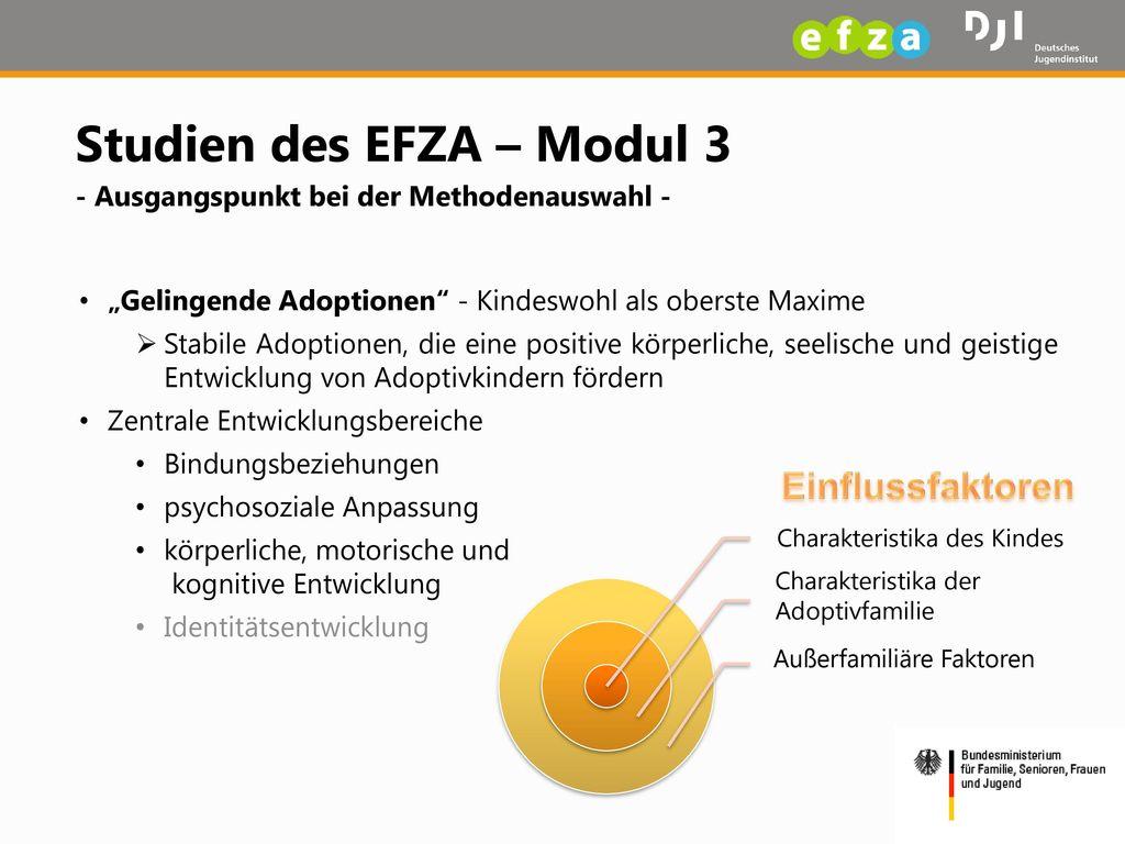 Studien des EFZA – Modul 3 - Ausgangspunkt bei der Methodenauswahl -
