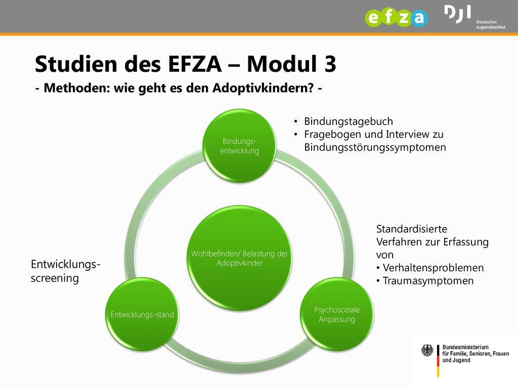 Studien des EFZA – Modul 3 - Methoden: wie geht es den Adoptivkindern