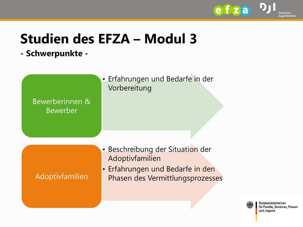 Studien des EFZA – Modul 3 - Schwerpunkte -