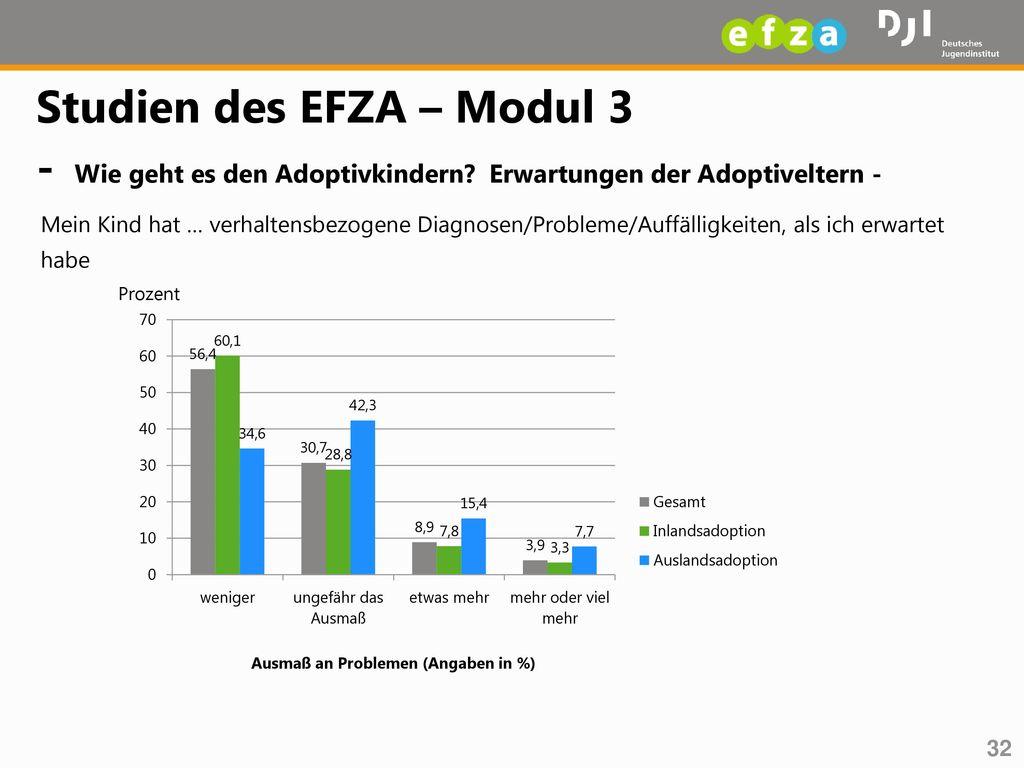 Studien des EFZA – Modul 3 - Wie geht es den Adoptivkindern