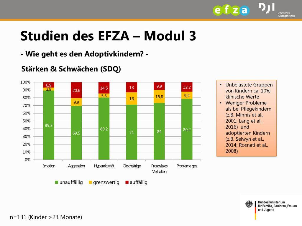 Studien des EFZA – Modul 3 - Wie geht es den Adoptivkindern -