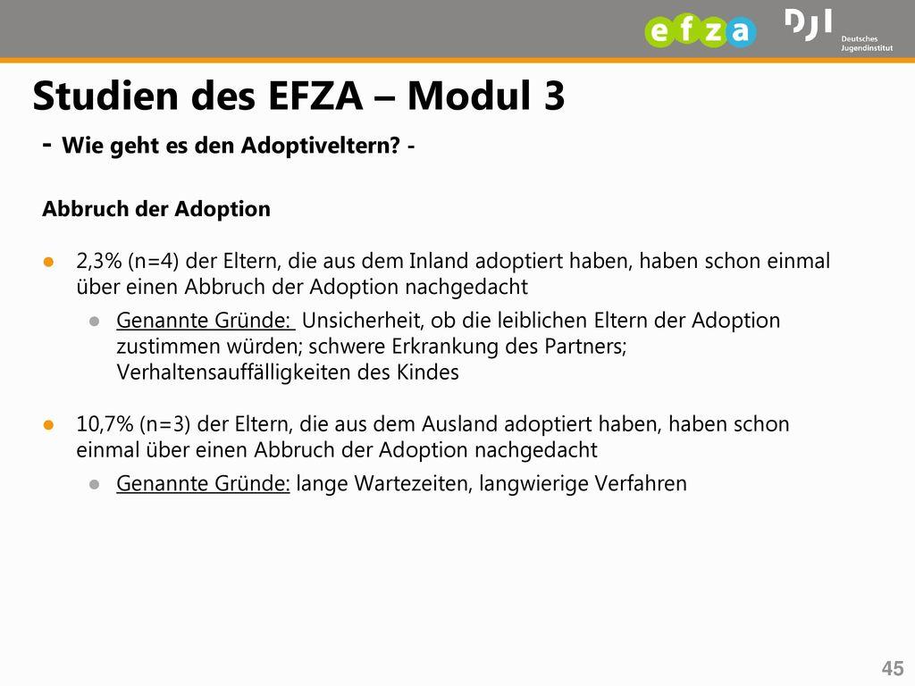 Studien des EFZA – Modul 3 - Wie geht es den Adoptiveltern -