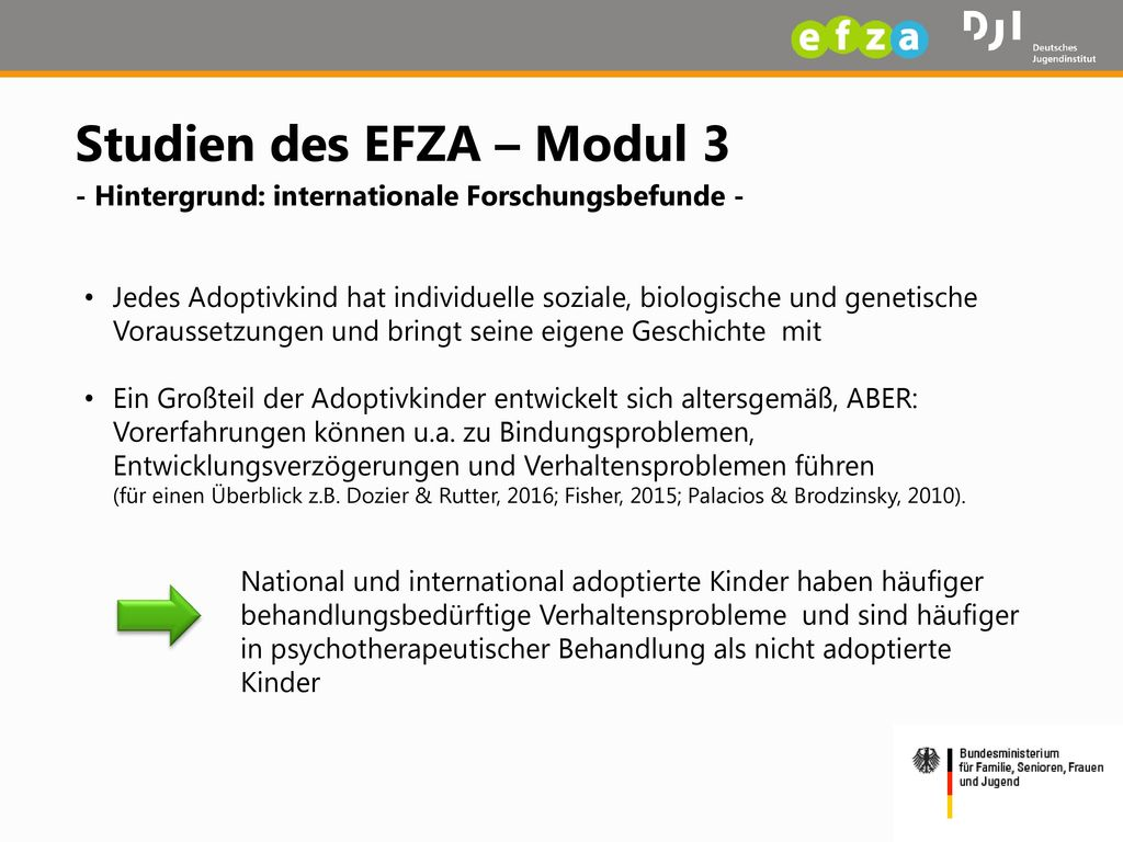 Studien des EFZA – Modul 3 - Hintergrund: internationale Forschungsbefunde -