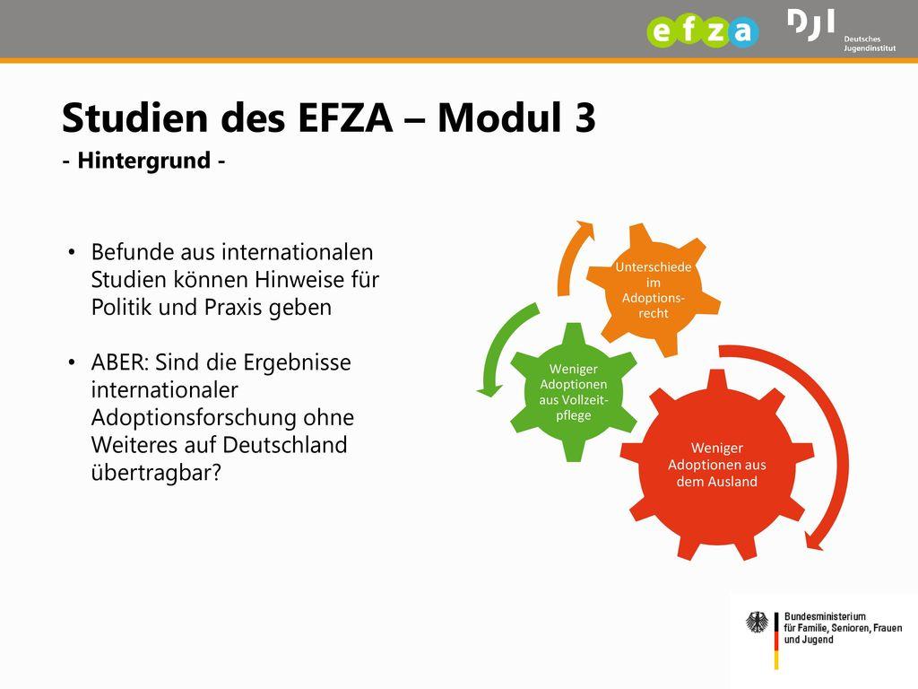 Studien des EFZA – Modul 3 - Hintergrund -