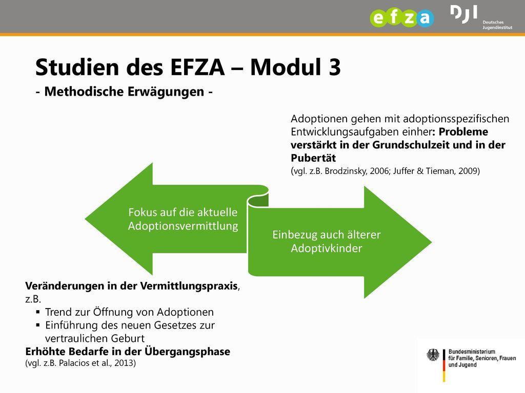 Studien des EFZA – Modul 3 - Methodische Erwägungen -