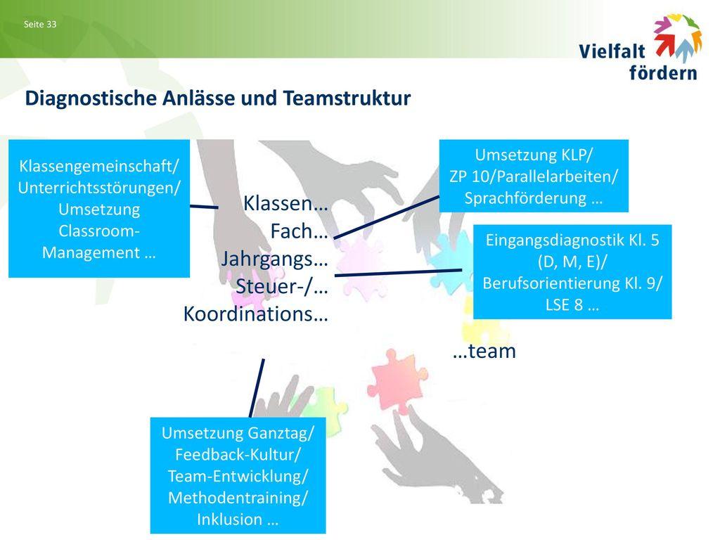 Diagnostische Anlässe und Teamstruktur