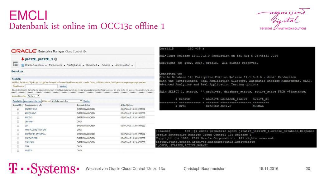 Datenbank ist online im OCC13c offline 1