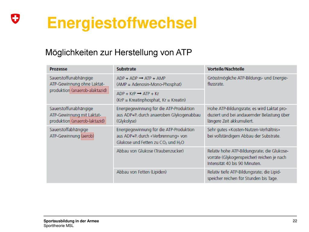 Energiestoffwechsel Möglichkeiten zur Herstellung von ATP