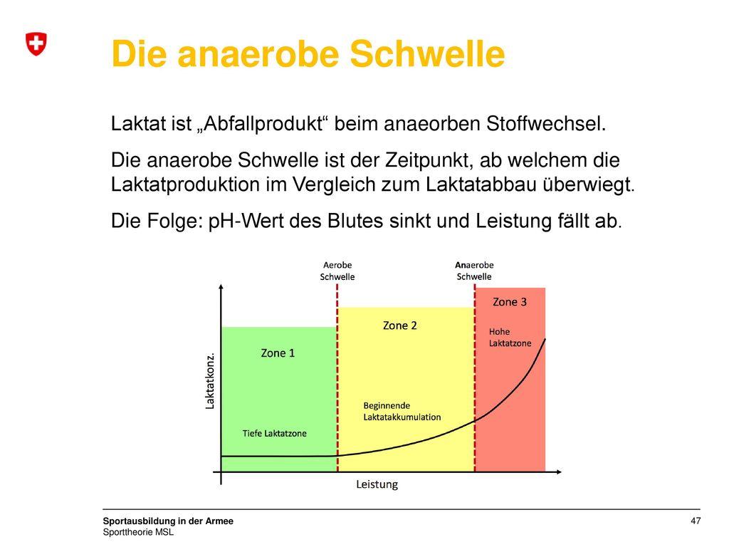 """Die anaerobe Schwelle Laktat ist """"Abfallprodukt beim anaeorben Stoffwechsel."""