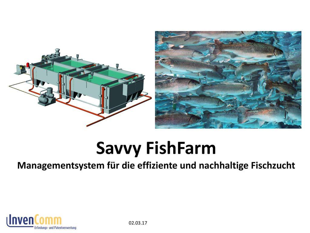 Savvy FishFarm Managementsystem für die effiziente und nachhaltige Fischzucht