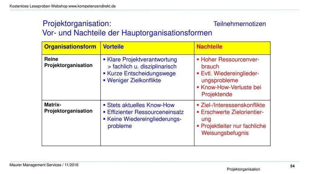 Projektorganisation: