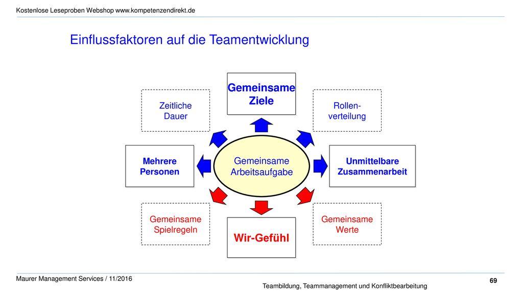 Einflussfaktoren auf die Teamentwicklung