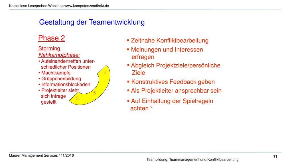 Gestaltung der Teamentwicklung