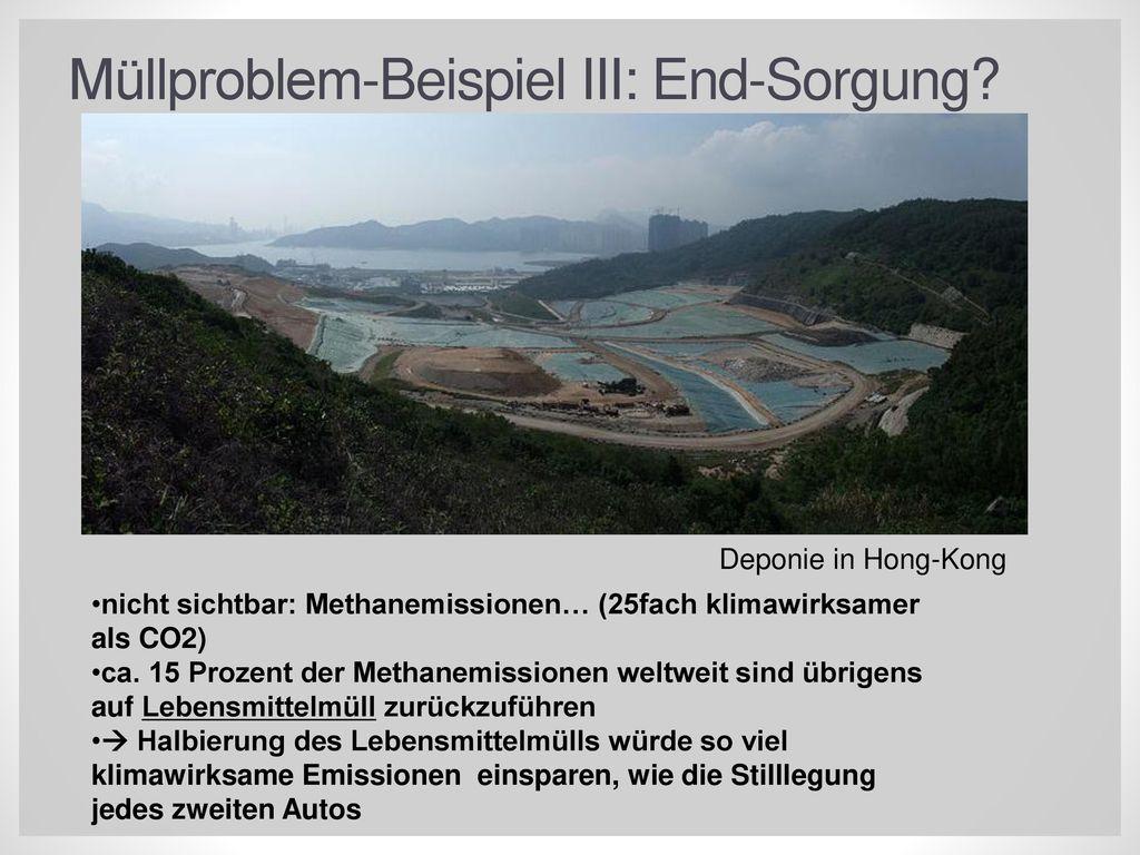 Müllproblem-Beispiel III: End-Sorgung