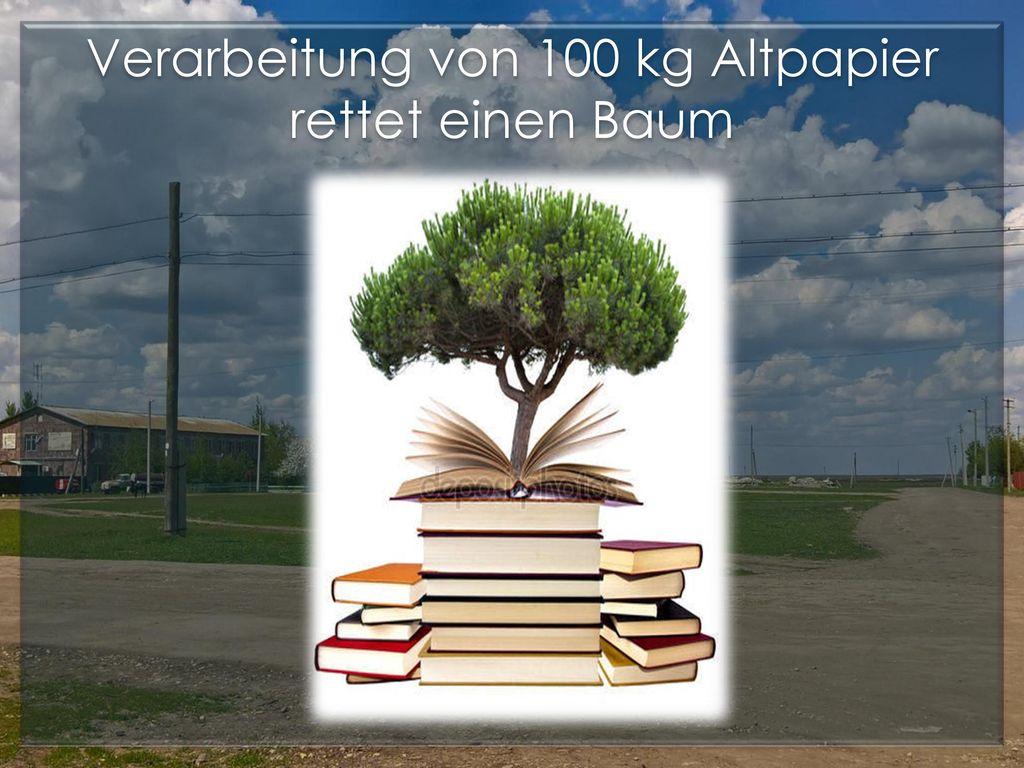 Verarbeitung von 100 kg Altpapier rettet einen Baum