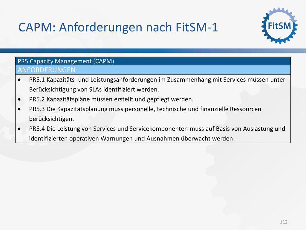 CAPM: Anforderungen nach FitSM-1