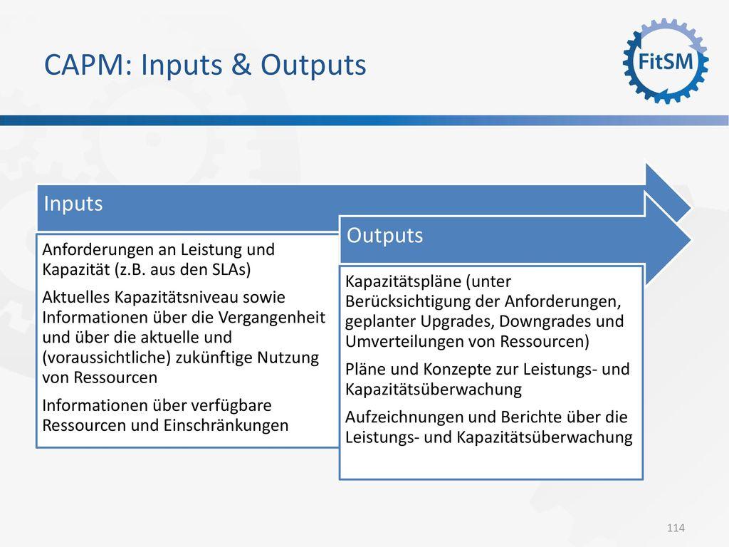 CAPM: Inputs & Outputs Inputs Outputs