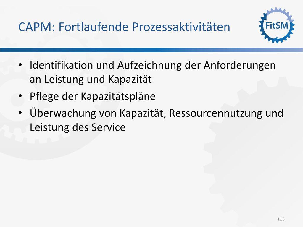CAPM: Fortlaufende Prozessaktivitäten