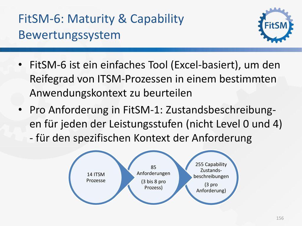 FitSM-6: Maturity & Capability Bewertungssystem