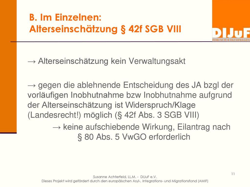 B. Im Einzelnen: Alterseinschätzung § 42f SGB VIII