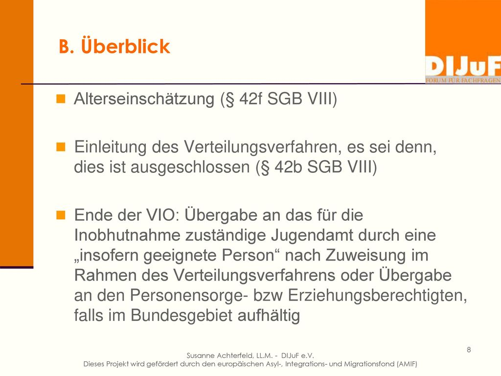 B. Überblick Alterseinschätzung (§ 42f SGB VIII)