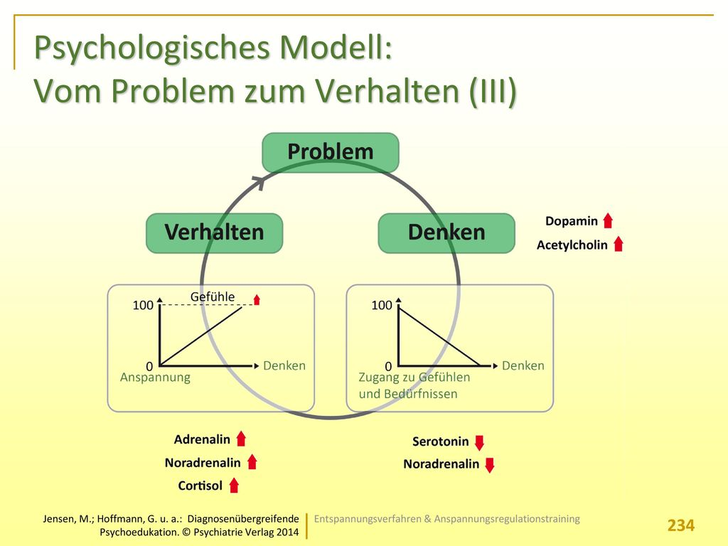 Psychologisches Modell: Vom Problem zum Verhalten (III)