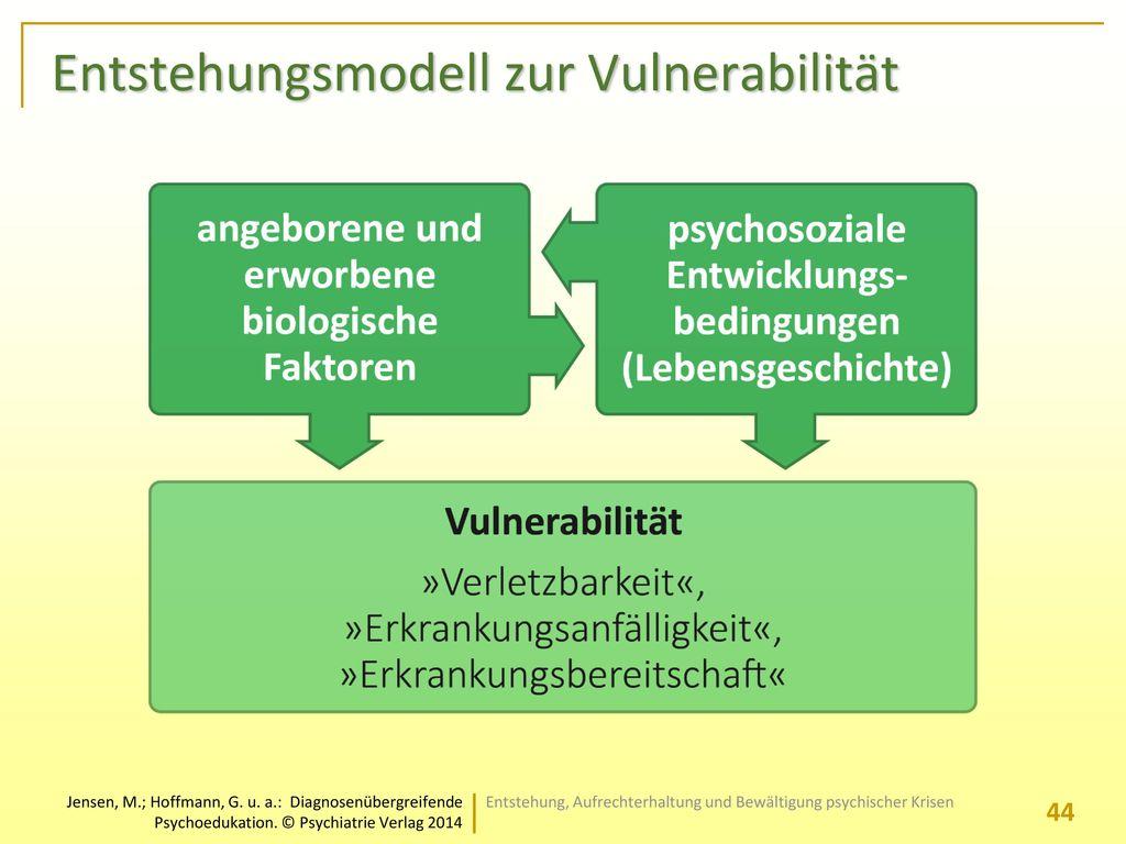 Entstehungsmodell zur Vulnerabilität