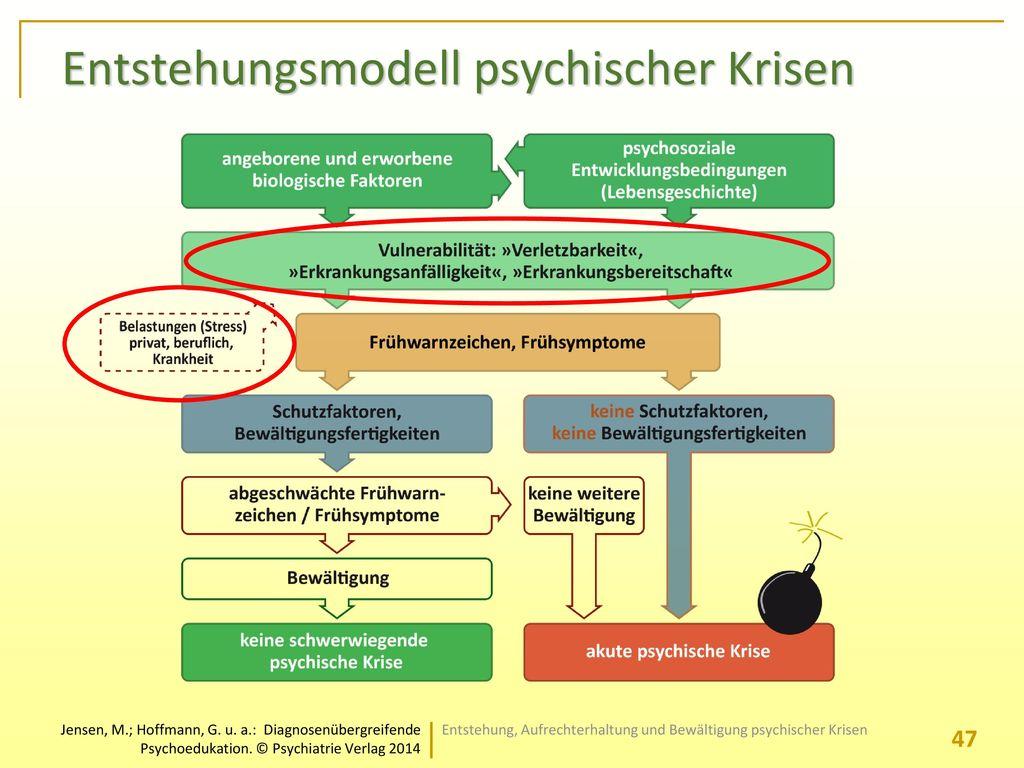 Entstehungsmodell psychischer Krisen