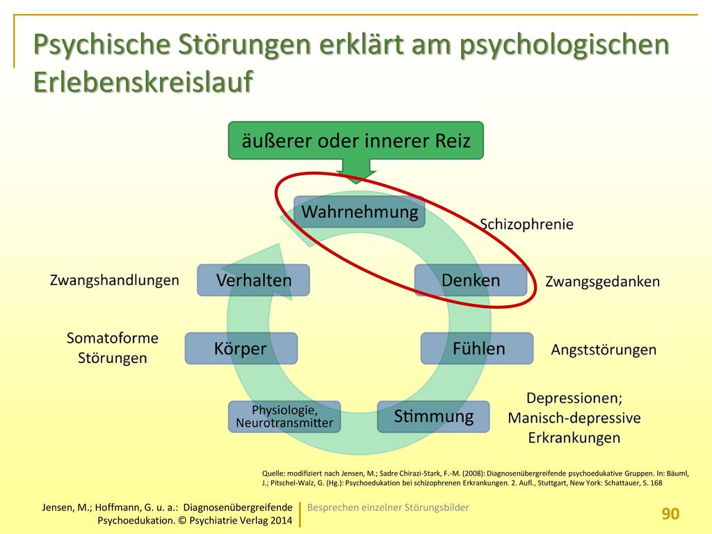 Psychische Störungen erklärt am psychologischen Erlebenskreislauf