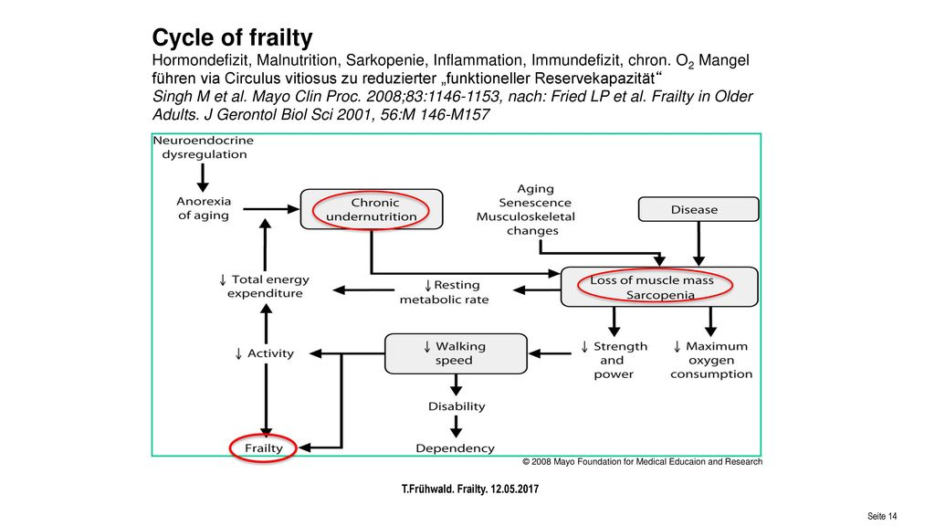 Cycle of frailty