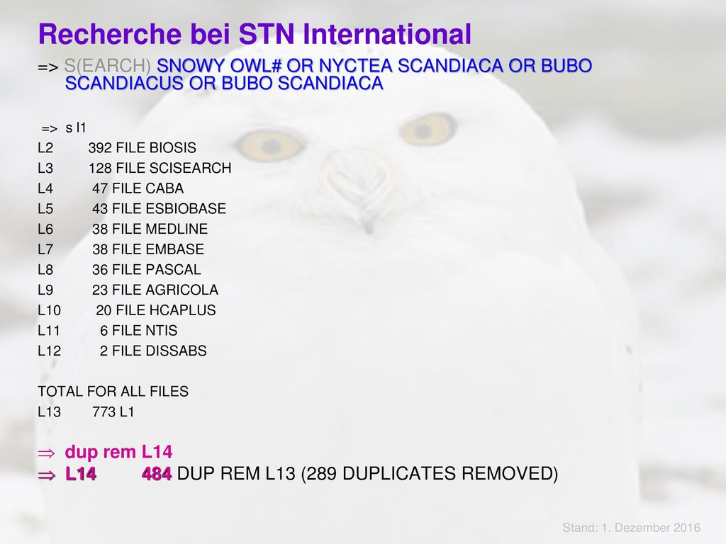 Recherche bei STN International