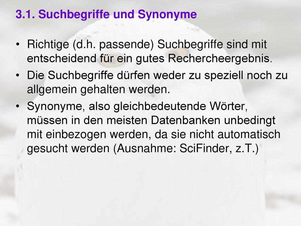 3.1. Suchbegriffe und Synonyme