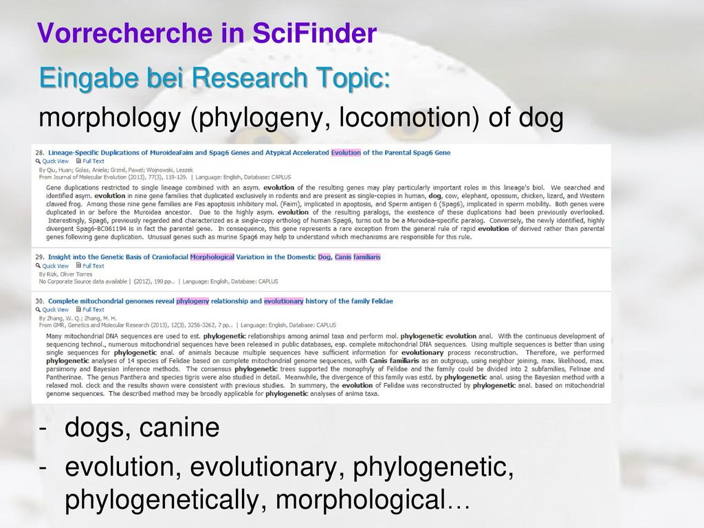 Vorrecherche in SciFinder