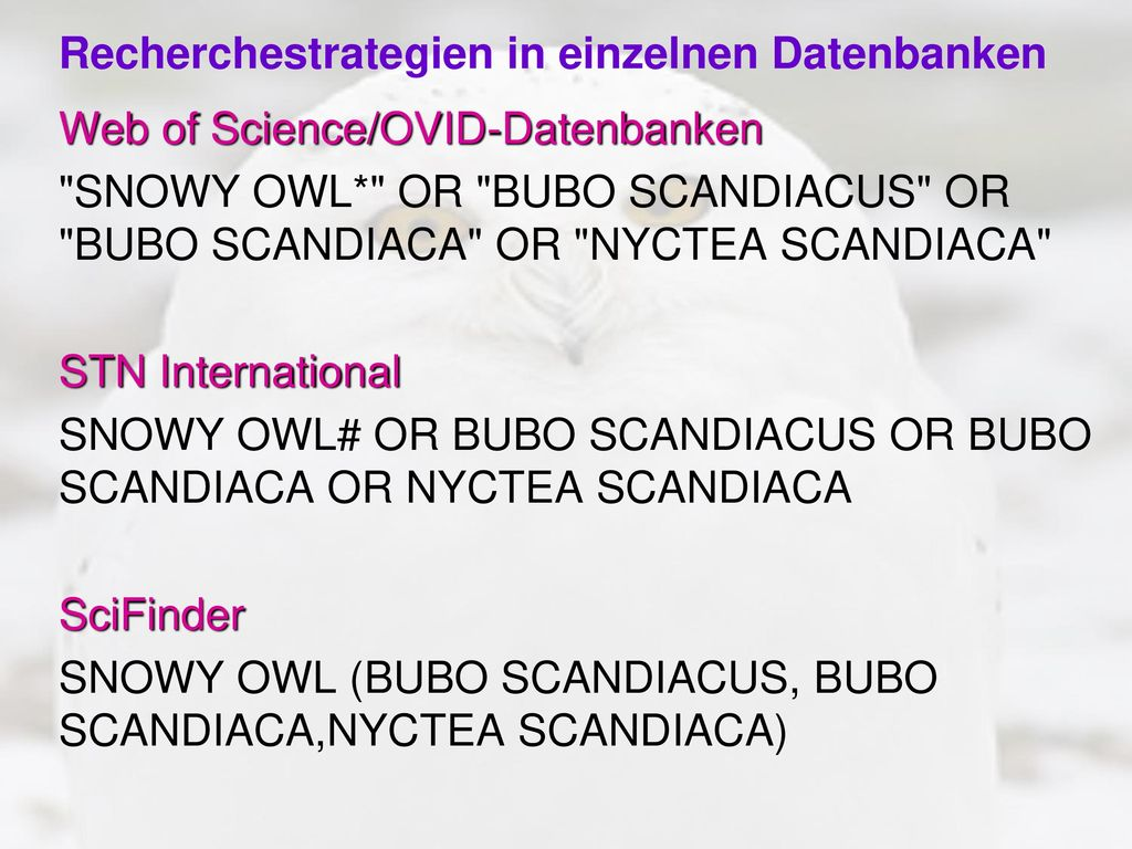 Recherchestrategien in einzelnen Datenbanken