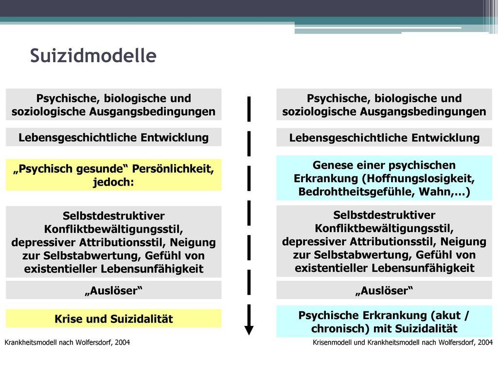 Suizidmodelle Psychische, biologische und soziologische Ausgangsbedingungen. Psychische, biologische und soziologische Ausgangsbedingungen.