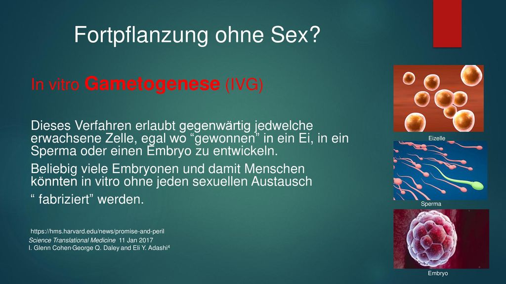 Fortpflanzung ohne Sex