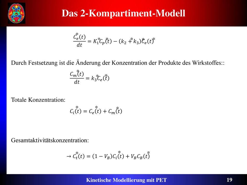 Das 2-Kompartiment-Modell