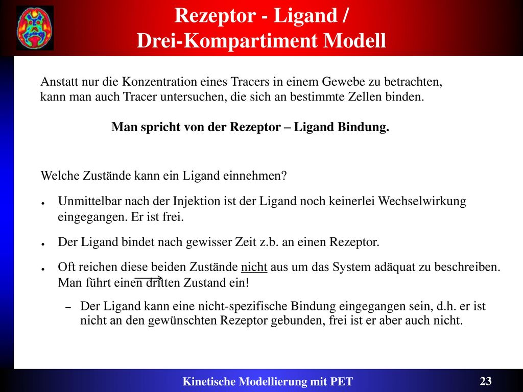 Rezeptor - Ligand / Drei-Kompartiment Modell