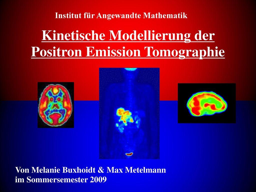 Kinetische Modellierung der Positron Emission Tomographie