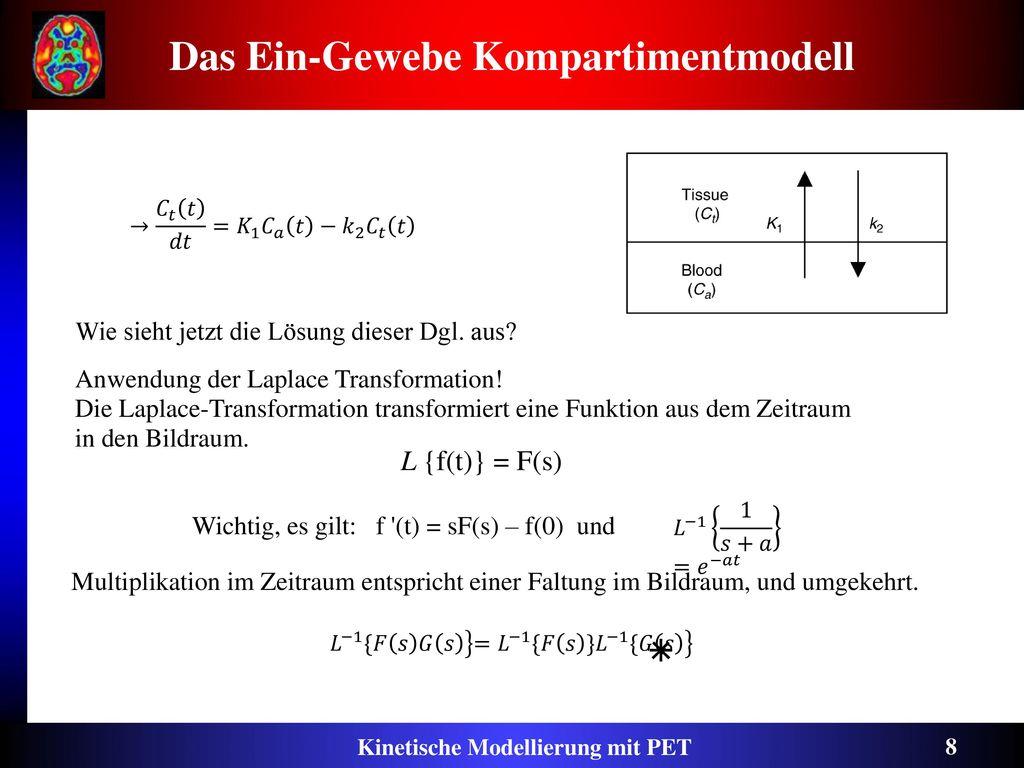 Das Ein-Gewebe Kompartimentmodell