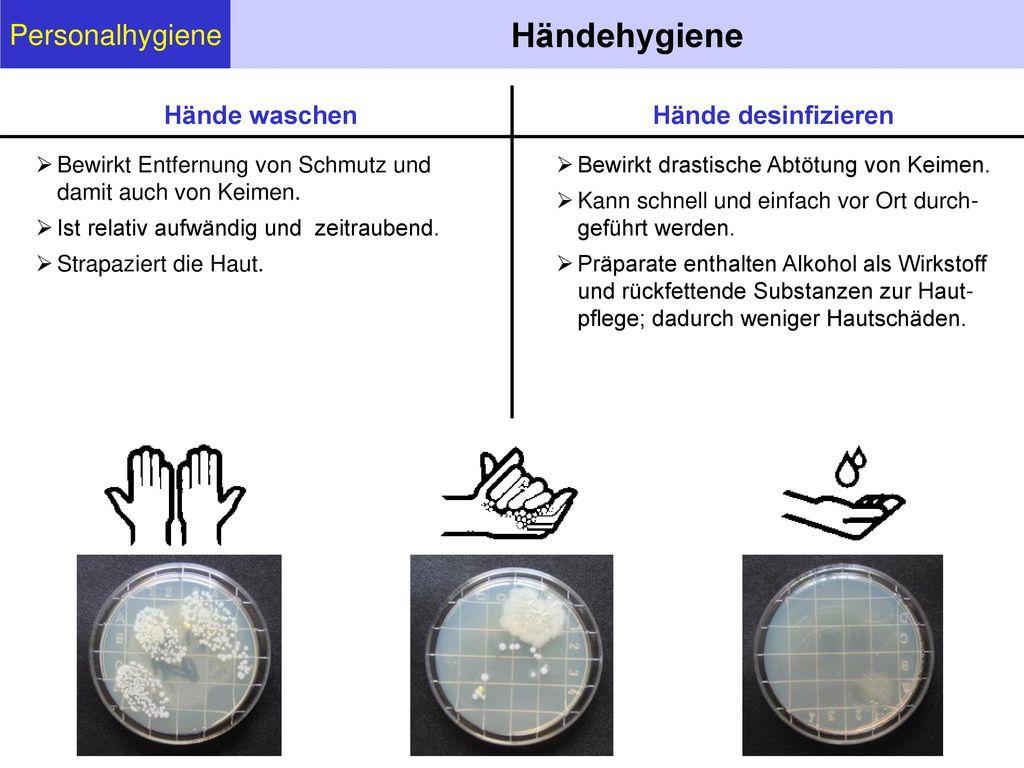 Händehygiene Personalhygiene Hände waschen Hände desinfizieren