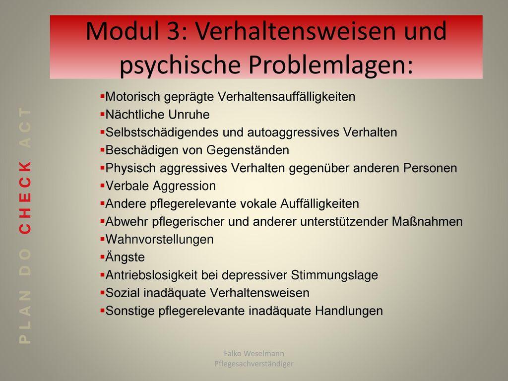 Modul 3: Verhaltensweisen und psychische Problemlagen: