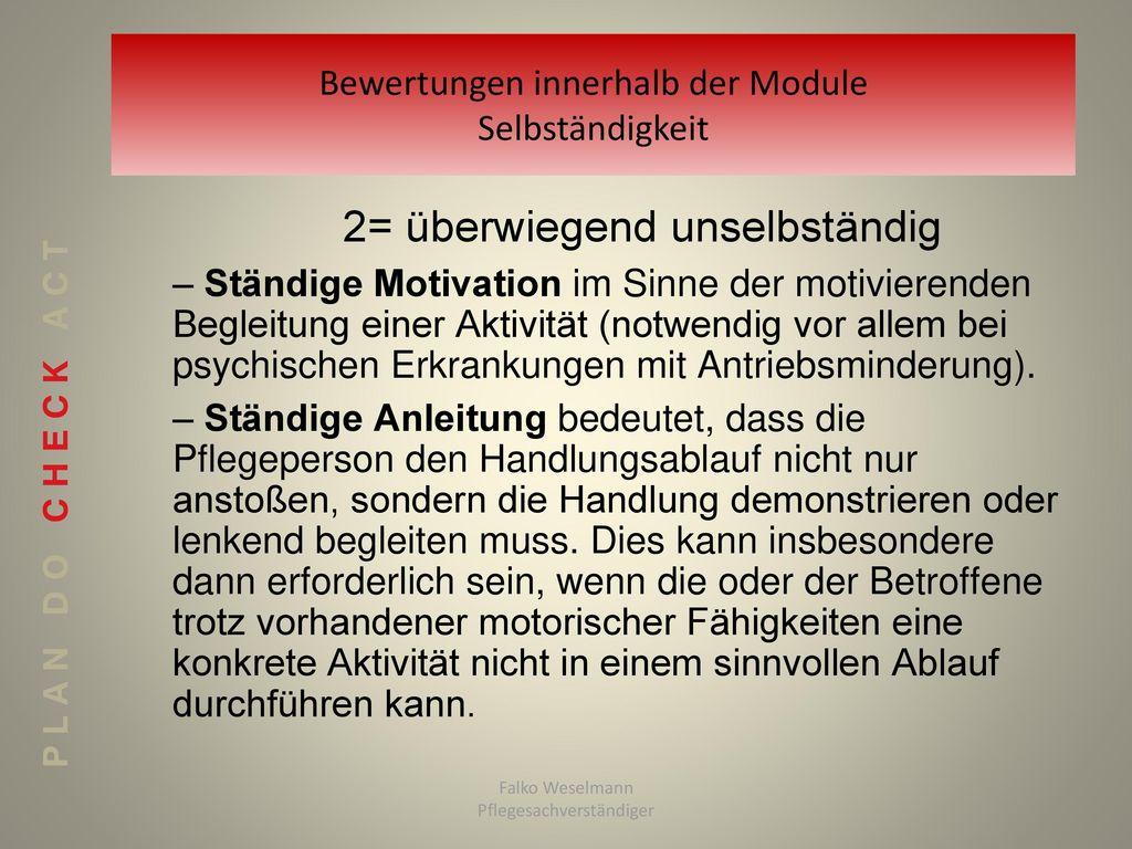 Bewertungen innerhalb der Module Selbständigkeit
