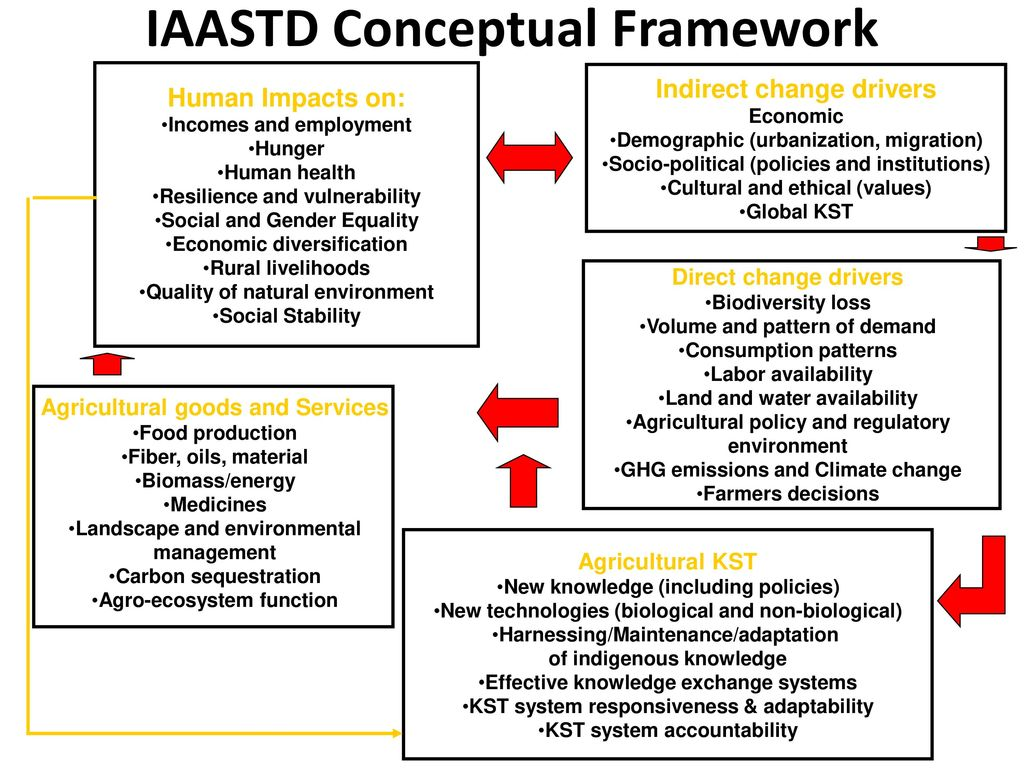 IAASTD Conceptual Framework