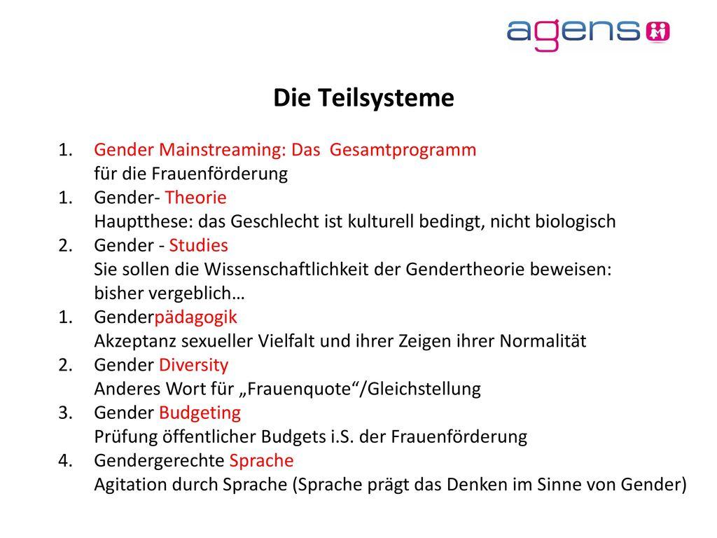 Die Teilsysteme Gender Mainstreaming: Das Gesamtprogramm