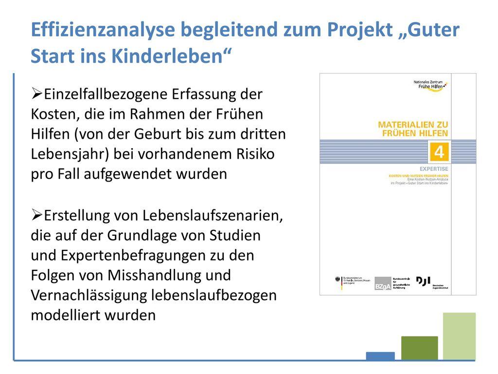 """Effizienzanalyse begleitend zum Projekt """"Guter Start ins Kinderleben"""
